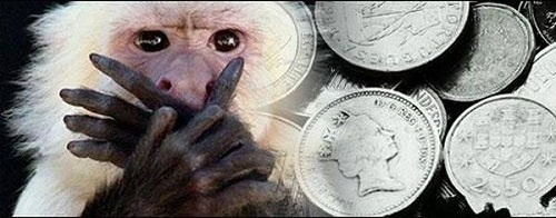 обезьяны и деньги